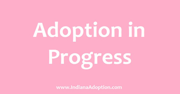 Adoption_In_Progress