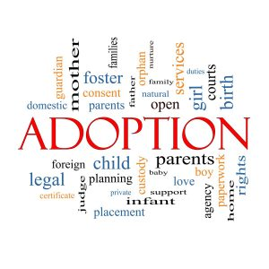 Best adoption agency